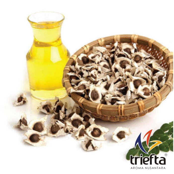 Moringa Seed Oil /Minyak Biji Kelor